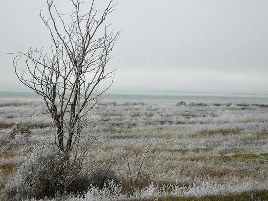 Прощай, урожай: на Крым идут заморозки