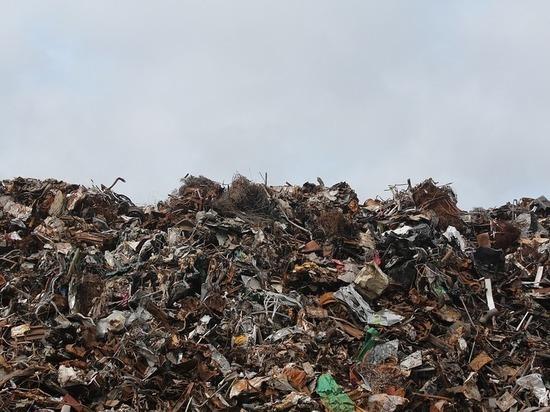В Пыталовском районе не разработали схемы размещения свалок мусора