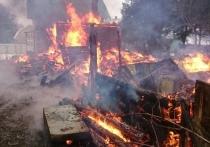 Количество пострадавших от огня в Забайкалье выросло до 18