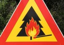 Высокий класс пожарной опасности 20 апреля ожидается в 4 районах Забайкалья