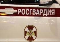 Ярославские росгвардейцы поймали поджгателя травы