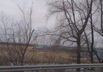 Поля горят под Барнаулом в Присягино