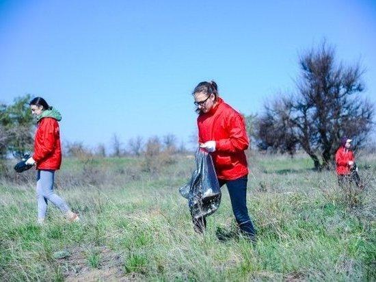 Волгоградцы убрали территорию мемориального комплекса на Лысой горе