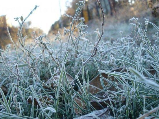 Симферопольцев предупредили о заморозках на выходных