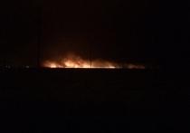 На Мамаевом кургане в Волгограде загорелись трава и тростник