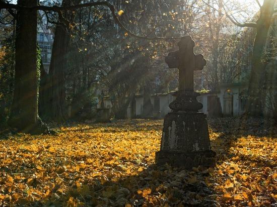 Подрядчик отказался подписать контракт для постройки кладбища в Пскове