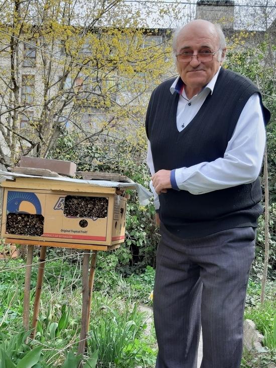 Дикие пчёлы в городе: как в Крыму получают пользу от осмий