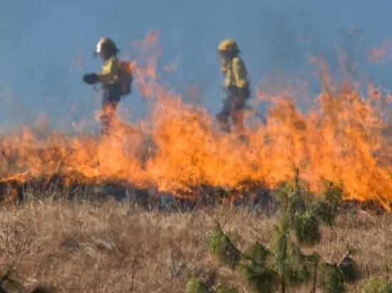 Природный пожар произошел в пойме Клязьмы