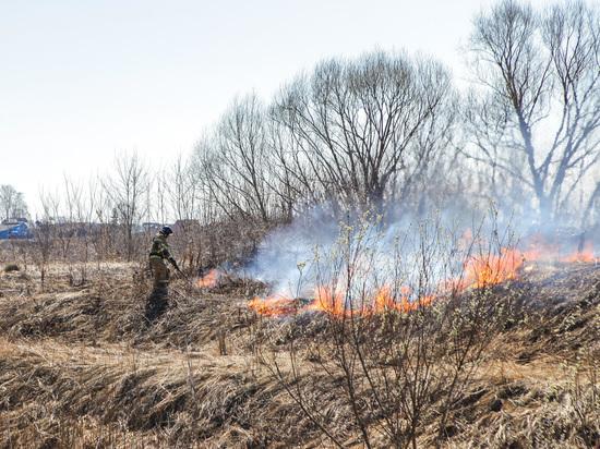 Особый противопожарный режим  введен в Мордовии