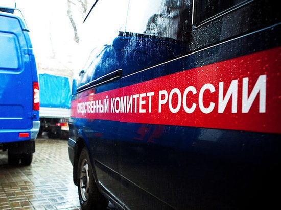 В Мордовии шестиклассница покончила жизнь самоубийством