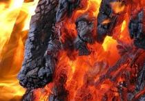 17 дачных домиков загорелись в Кстовском районе