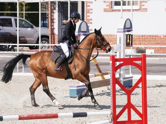 «Проскакали по Георгенбургу»: в Черняховске прошёл турнир по конному спорту
