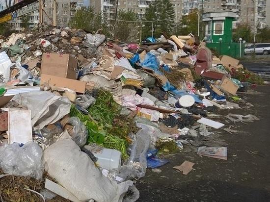 «Может быть, трех моих собак за человека посчитали»: ФАС нашла нарушения в «мусорном тарифе» в Свердловской области
