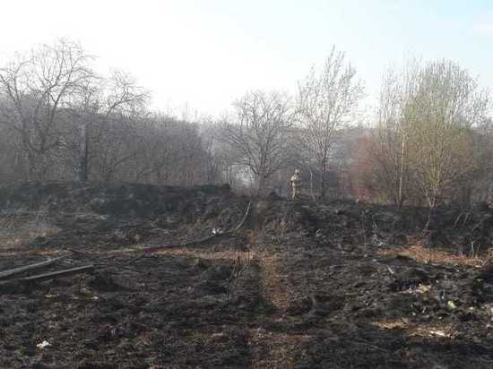 Пожар в садах в Кстовском районе ликвидирован