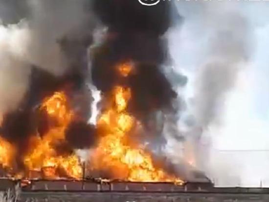 В алтайском селе Шипуново сгорели старые склады на местном элеваторе
