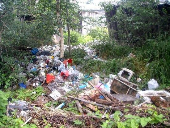 По какой цене будем вывозить мусор с дачи
