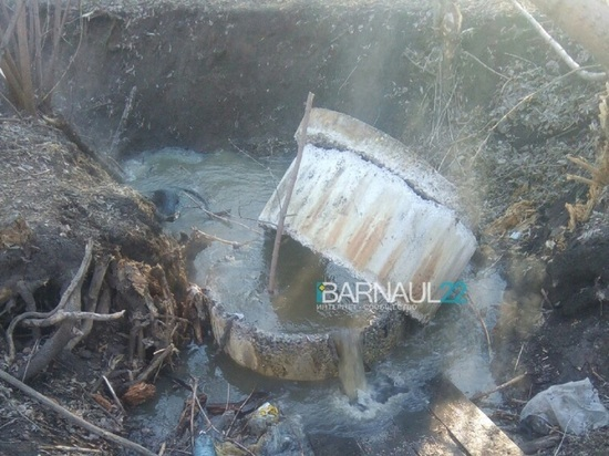 В заброшенном барнаульском парке «Юбилейный» из канализационного люка хлестал кипяток