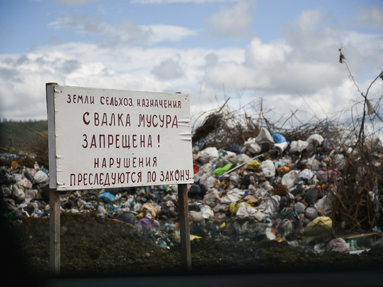 На землях пайщиков в Успенском районе Кубани устроили свалку