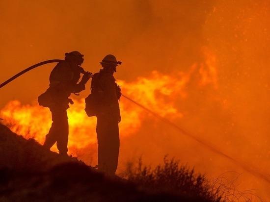 Осипов заявил об усилении противопожарной службы в Забайкалье