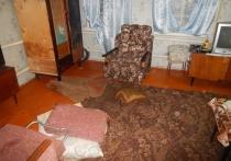 В Воронежской области подозреваемый в убийстве отказался разговаривать со следователями