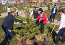 Старт Всероссийскому дню посадки леса дали в новом парке в Калуге