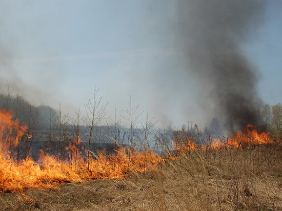 МЧС предупреждает о высокой опасности пожаров