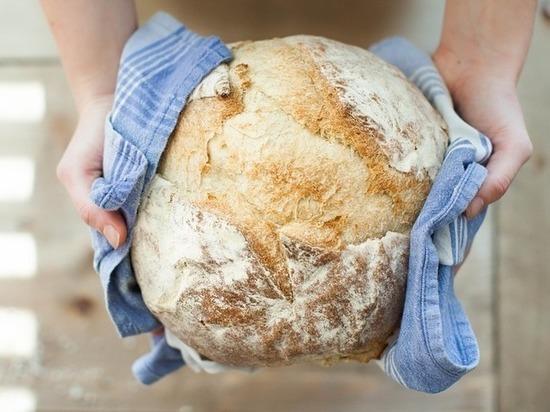 Учёные доказали опасность хлеба для здоровья человека