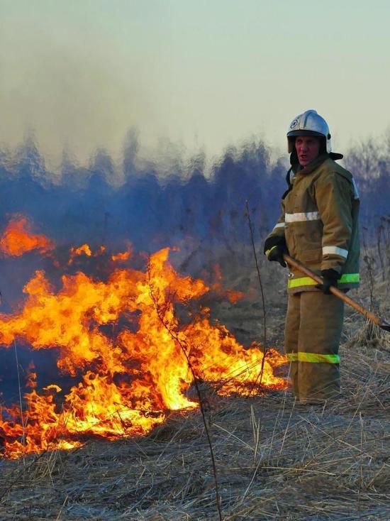 Два лесных пожара произошли в Ивановской области 26 апреля
