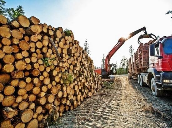 Китайская корпорация может построить лесоперерабатывающее предприятие в Хабаровском крае