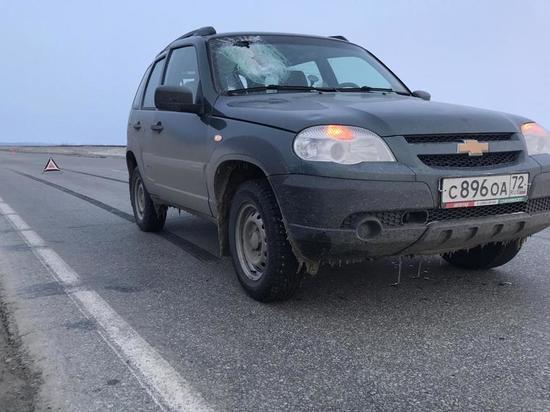 Пассажирку легковушки убило льдиной на трассе в ЯНАО