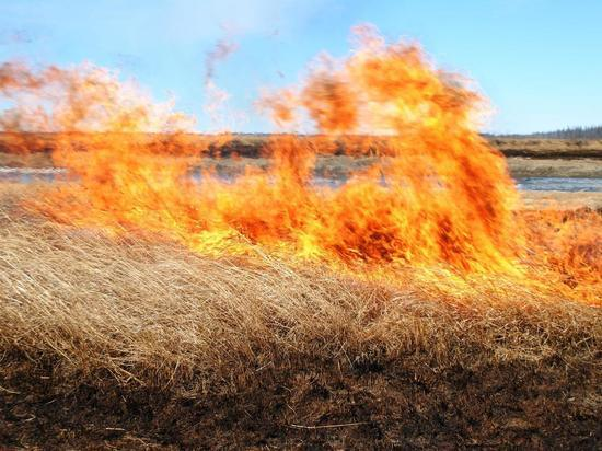 На Пасху в Мордовии сухая трава горела 38 раз
