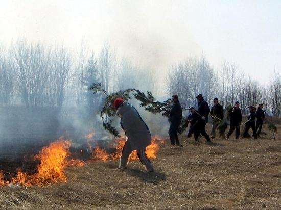 В Чувашии усилены меры по предотвращению возгораний сухой травы