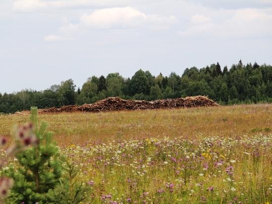 Многодетные семьи Вологодчины активно получают «земельные сертификаты»