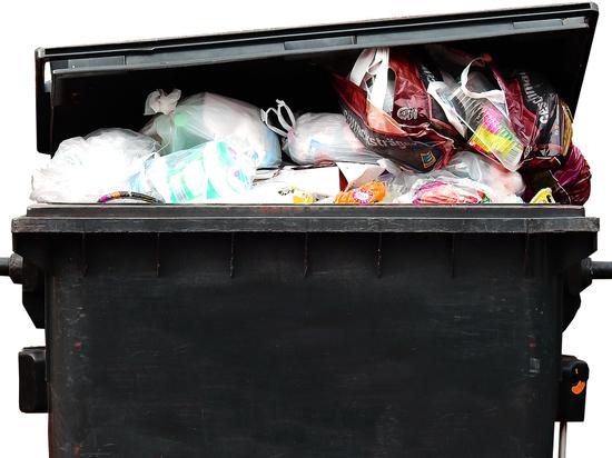 В Кемерове за едой из мусорки стоят в очереди