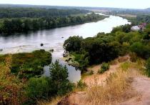 В Воронежской области пресечена незаконная продажа охраняемых земель