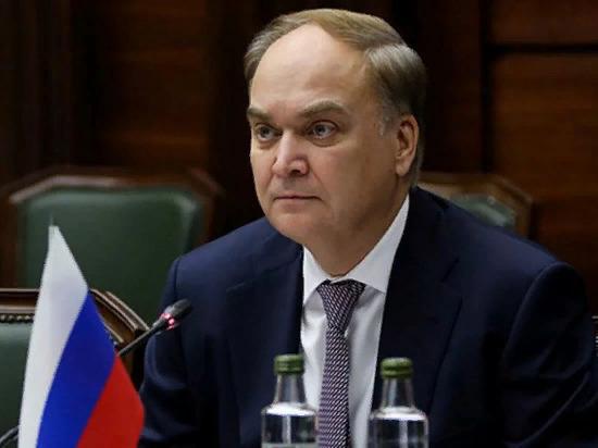 Антонов назвал дело осужденной в США россиянки Бутиной политизированным