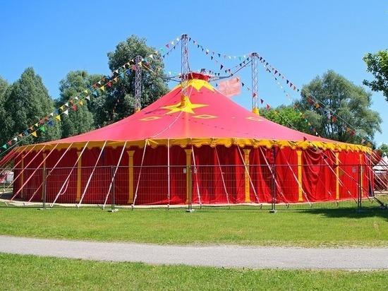 В Магасе запретили все цирковые выступления с животными