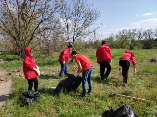 Калмыцкая команда «Молодежки ОНФ» участвовала в экологической акции