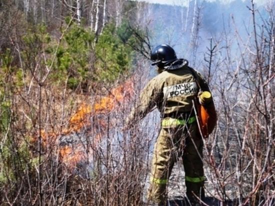 Синоптики прогнозируют аномальную жару на Южном Урале. Введен противопожарный режим