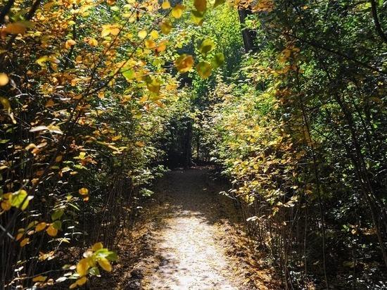 В волгоградских природных парках открылись 50 туристических маршрутов