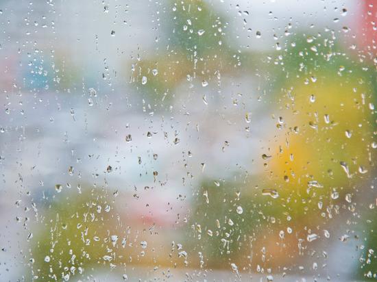 Рабочий понедельник в Волгограде начнется с гроз и дождей