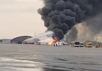 Экипаж сгоревшего в «Шереметьево» лайнера принял решение вернуться в аэропорт вылета после того, как в самолёт ударила молния