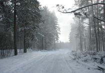 КамАЗ перевернулся на дороге между месторождениями в Тазовском районе