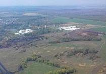 Рязанские чиновники с воздуха осмотрели лесные массивы области