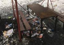 Ноябряне пожаловались на свалку мусора в лесу