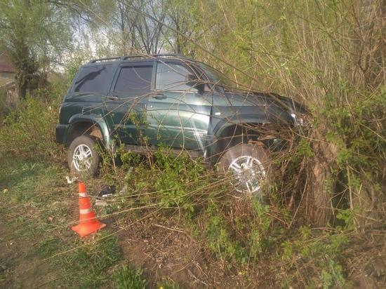 В Мордовии пьяный водитель протаранил дерево на угнанном «УАЗе»