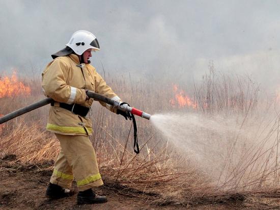 В праздники хабаровские пожарные выезжали на тушение палов более 500 раз