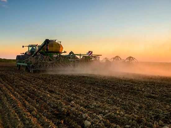 В районах Новосибирской области начали сеять яровые