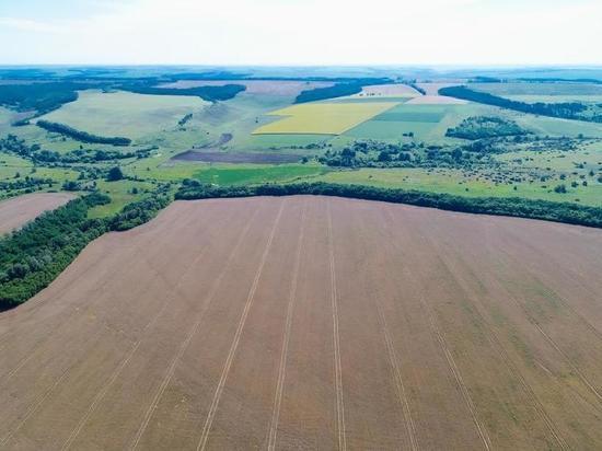 «Мираторг» вернул в сельхозоборот 3,5 тыс. га заброшенных земель в Курской области