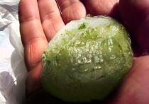 Оленевод нашел в ямальской тундре загадочный камень